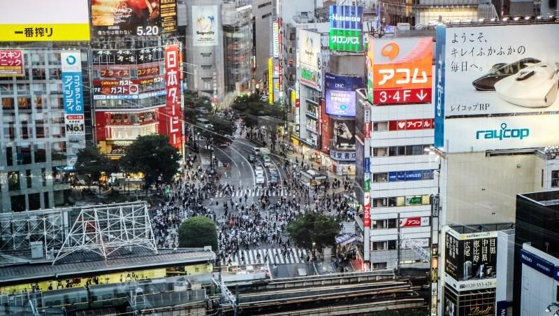 日本一年有高達9萬名「20歲以上成年男子」被收養!豐田、鈴木、佳能都有「養子繼承人」