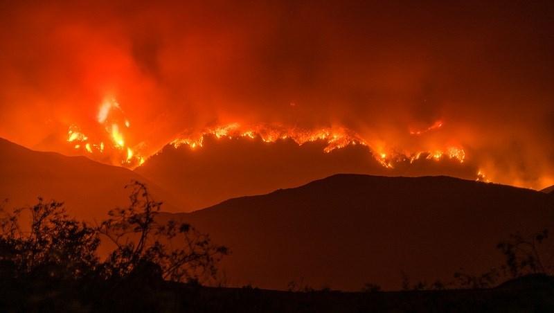 加州大火燒毀面積比紐約還大,死亡人數升至40人!還沒撲滅, 經濟損失上看3兆台幣