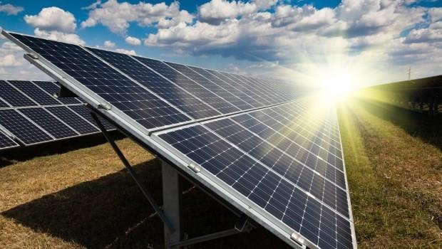 別再唱衰太陽能了!新興國家開始把農場都變電廠了...