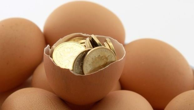養雞養到跟賣iPhone一樣賺》卜蜂股價一個月飆45%的秘密