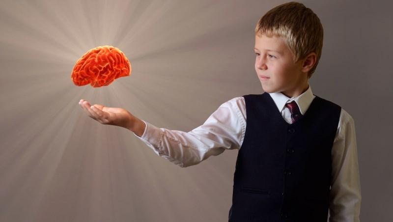 頭腦 智商