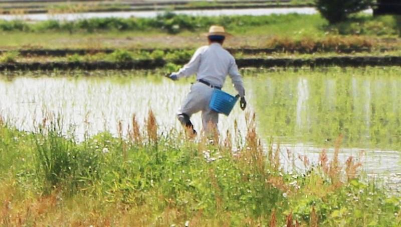 田 農夫 種田