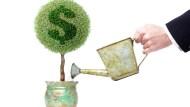 新手投資最怕沒時間看盤!比0050多賺4倍的存股法:這10檔買進不管也年賺26%