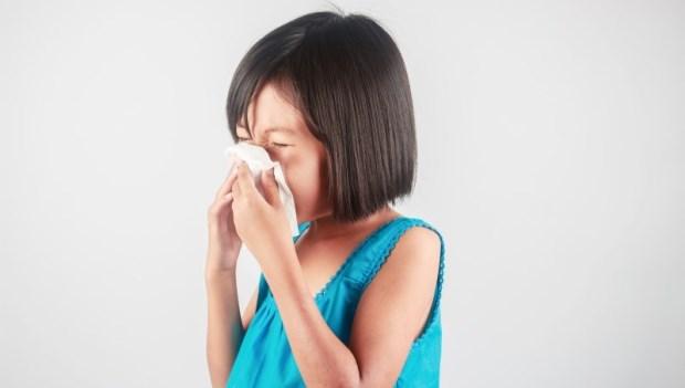 正視室內空氣品質 過敏往往來自品質不佳的室內空氣
