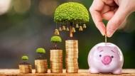定期定額不只適用基金,存股也能照著做:讓每月的儲蓄,變成錢滾錢的利器!