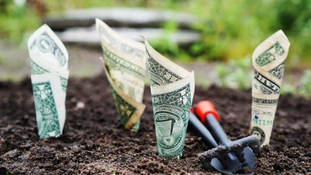 財富,理財,存錢,發財