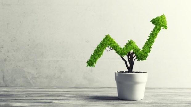 發明指數型共同基金,約翰伯格打拚一輩子的原因:「為了給人民更好的報酬」