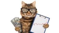 金融存股》一張表公開金控股今年漲跌幅,玉山金大漲36%!