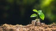 全球降息潮來臨》多重收益跟漲抗跌,配息、獲利一次滿足
