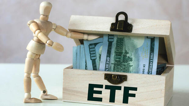 想無腦年賺10%卻買不起0050?這檔ETF台積電占比近半,股價只要30元!