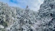 印度冰川崩裂、美德州暴雪…全球氣候