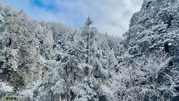 印度冰川崩裂、美德州暴雪…全球氣候異常頻傳,相關基金成黑馬,近1年報酬最高逾200%!