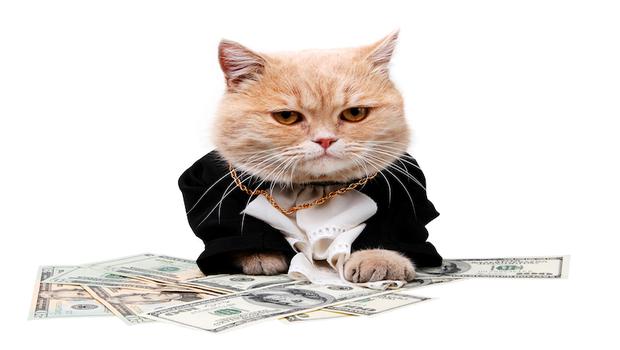 除權息就是賺股利?錯!跟著理財媽媽馬哈看懂眉角,才能賺到公司分紅+未來發展!