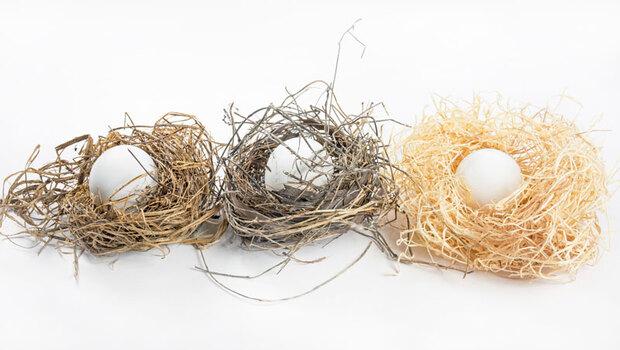 雞蛋要放不同籃子裡,才能降低風險?分散投資太多檔股票,小心反而疏於管理…