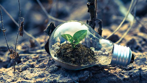 減碳風潮下,哪些基金可搭上順風車?理財教母林奇芬:2類基金有望成為新主流