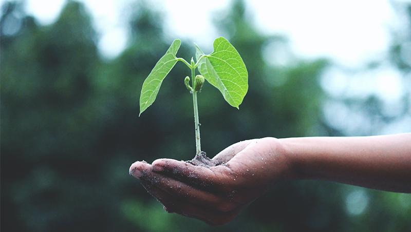 近8年碳排零增長,地球有救了?別樂觀!碳排總量再5年用光,ESG企業應加速落實這一點