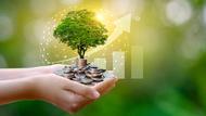 投資型保單紛改款,怎麼挑才對?市場