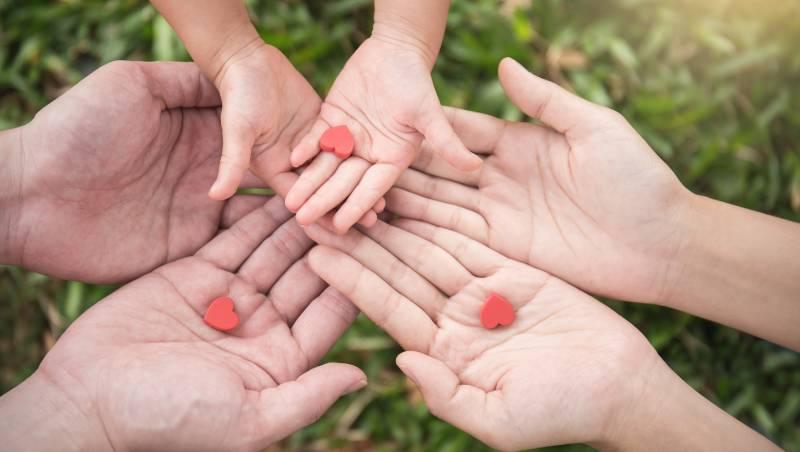 守護家庭照顧者七年有成 合庫人壽二度蟬連保險卓越獎