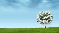 該選成長型飆股,還是長期投資?價值投資大師:想獲利需遵守3要素